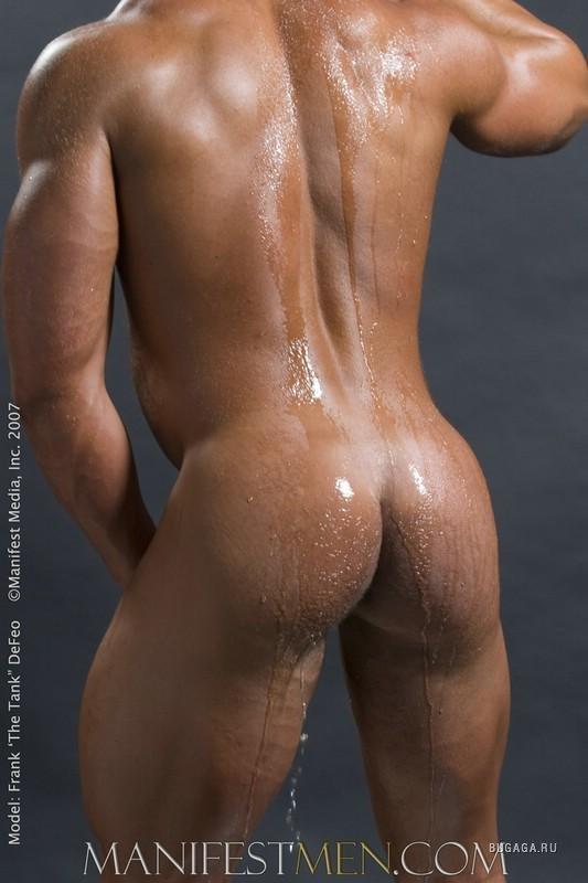 фото голой мужской жопы
