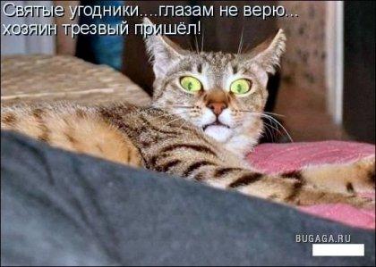 Подборка приколов))
