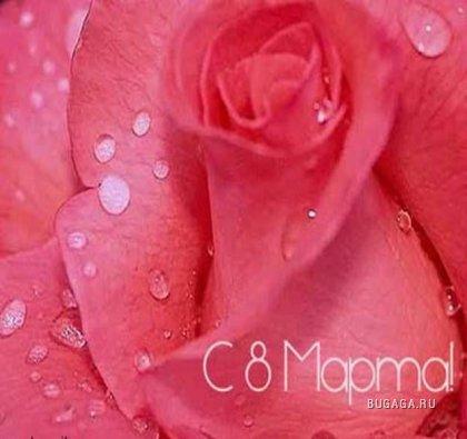 Цветы для девушек бугаги