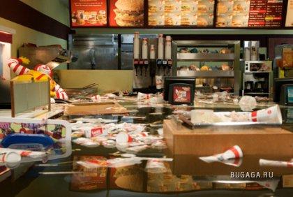 Датчане утопили McDonald's во имя искусства