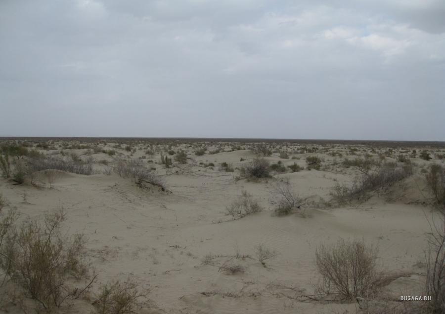 Аральское море сегодня (фото и видео)