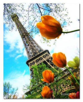 Эйфелева башня - самая узнаваемая архитектурная достопримечательность Парижа, всемирно известная как символ Франции...