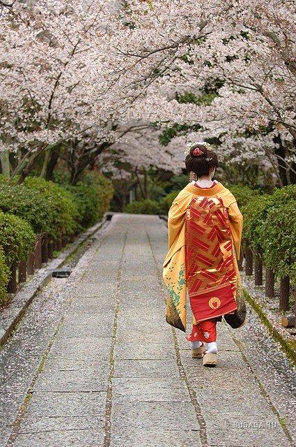 Картинки с японской природой