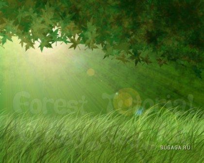 Зеленый во всех его проявлениях)))