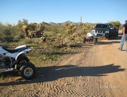 Почему не стоит попадать в аварии в пустыне
