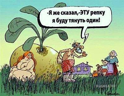 Подборка хорошего настроения : )