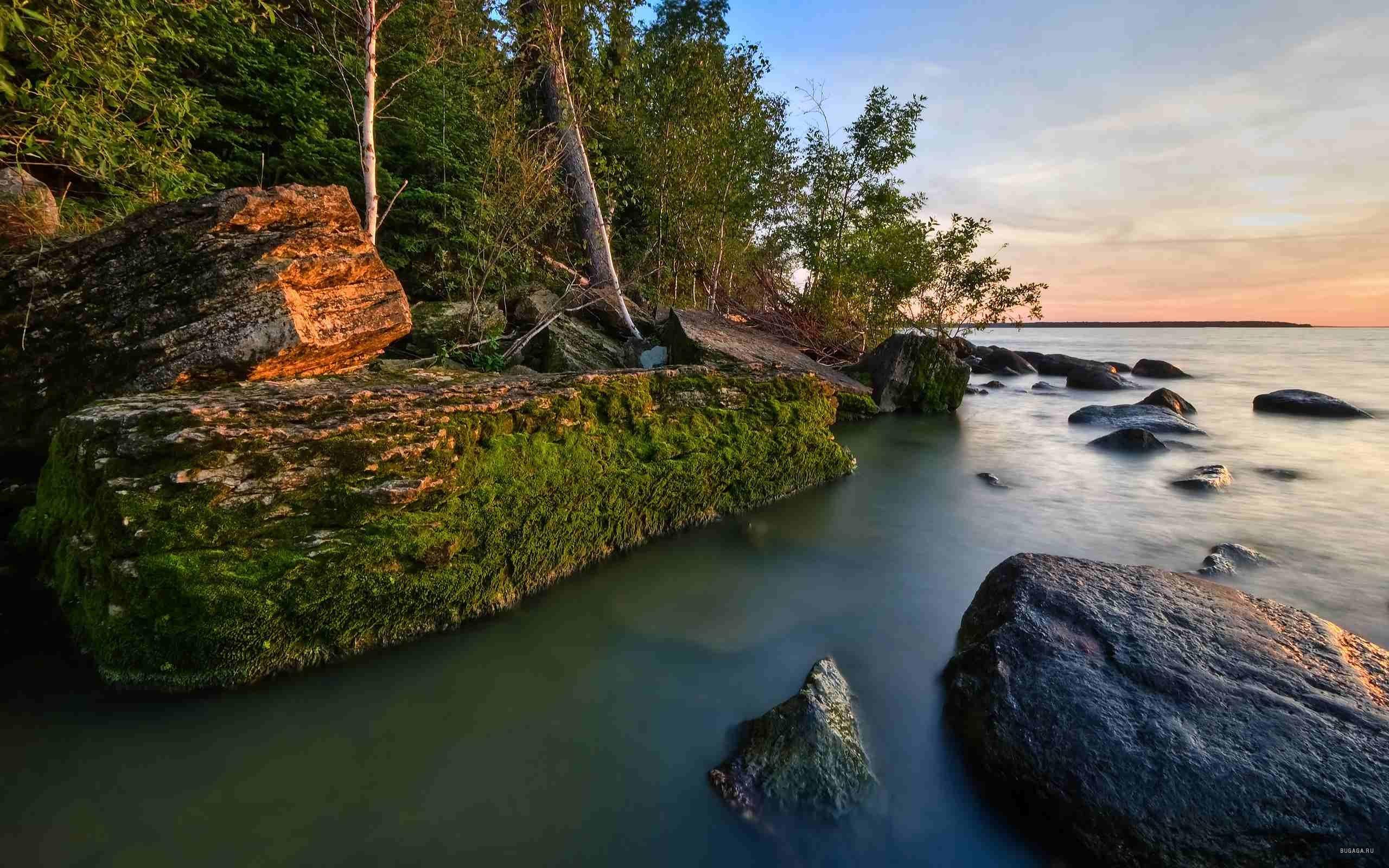 Amazing & Beautiful Free Nature Wallpapers HD | Top Free ...