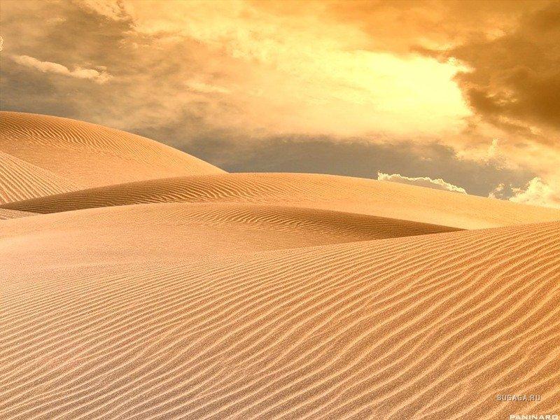 Пустыня. 1246288036_ar