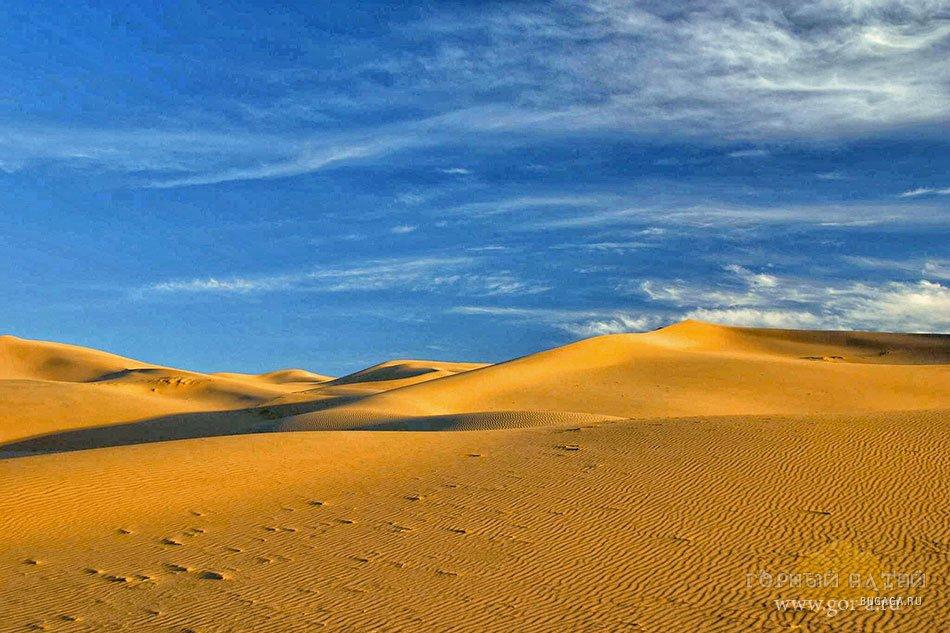 Самые большие пустыни мира