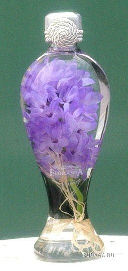 http://www.bugaga.ru/uploads/posts/2009-07/1248462922_387b11cd33e7.jpg