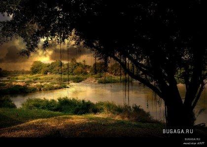 Красивые фото-работы Manuel Lao