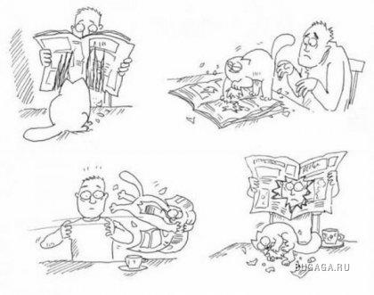 Кот Симон в рисунках
