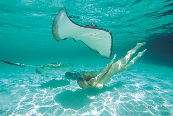 Подводное видео голых