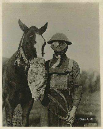 Забавные фото с минувших воин