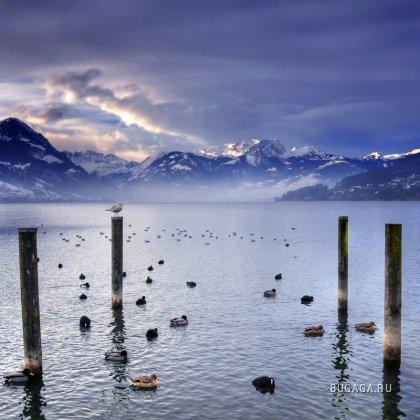 Природа во всей красе. Фотограф Philippe Sainte-Laudy