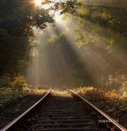 Рельсы и поезда