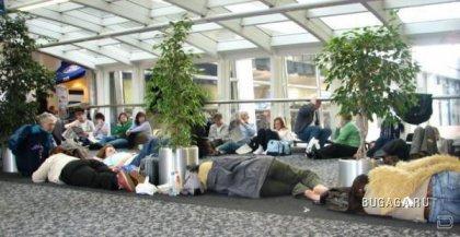 Жертвы аэропорта