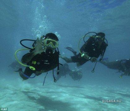 Министры ушли под воду