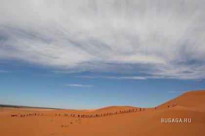Песчаный марафон
