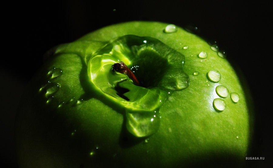 глубокий зеленый картинки говорит