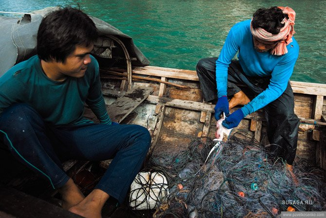 распутать рыболовную сеть