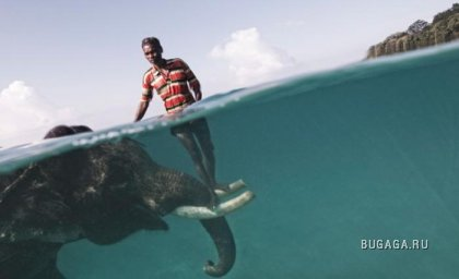 Фото National Geographic's