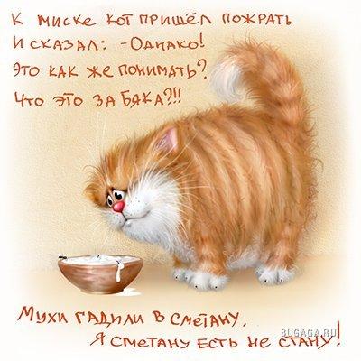 Милые картинки художника Алексея Долотова