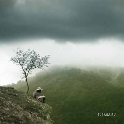 Фотоарт от Игоря Лиховидова