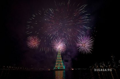 В Бразилии зажглась самая высокая «плавучая» елка
