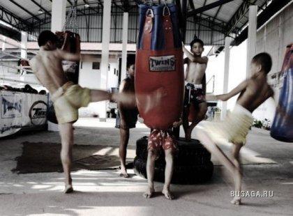 Подготовка бойцов Муэй Таи