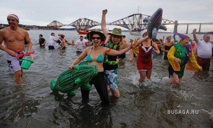Новый год по-шотландски