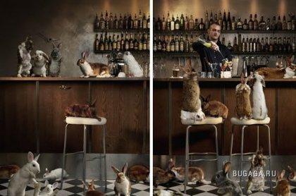 Рекламные картинки от Pysse Holmberg