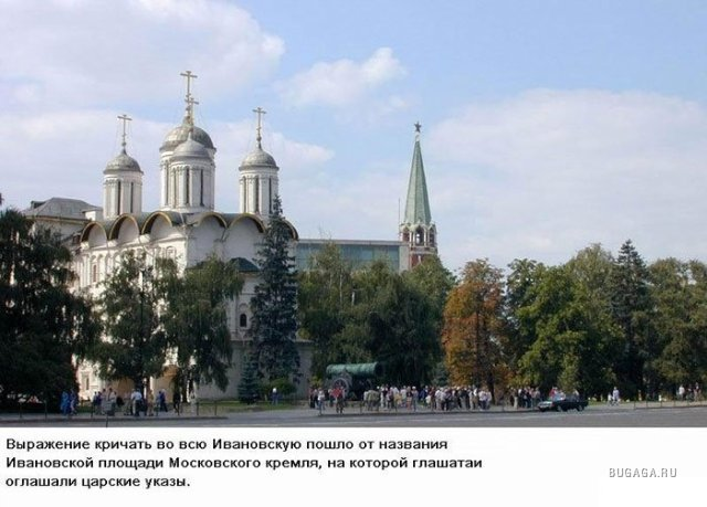 http://www.bugaga.ru/uploads/posts/2010-02/1266398123_8bb33a2095d57054f1bdf29a32a.jpg