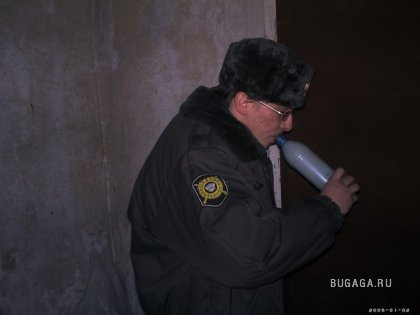 Большая служебная подборка (80 фото)