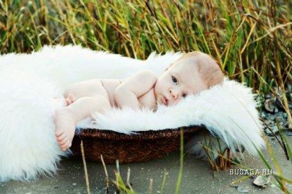 Фотограф Leigh Taylor: Малыши