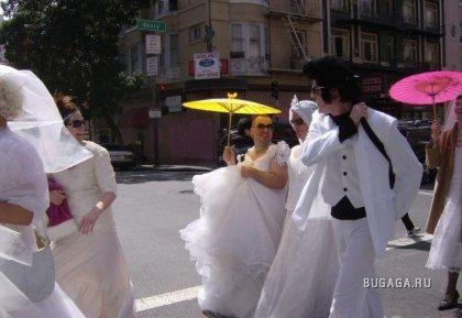 Невесты не того пола