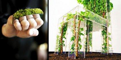 Дизайн – трава!