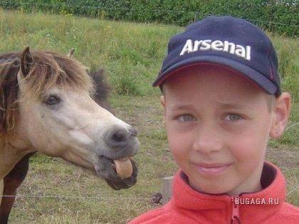 Лошадки тоже умеют прикалываться