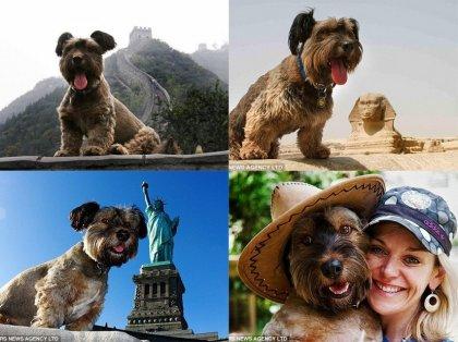 Пес – путешественник