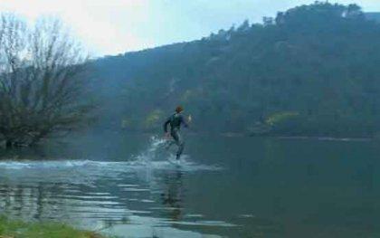 Бегуны по воде