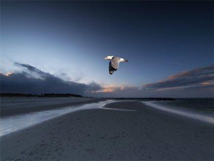 Работы фотографа Dirk Juergensen