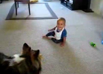 Ребёнок напугал собаку