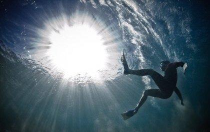 Подводный мир глазами Alex Tipple