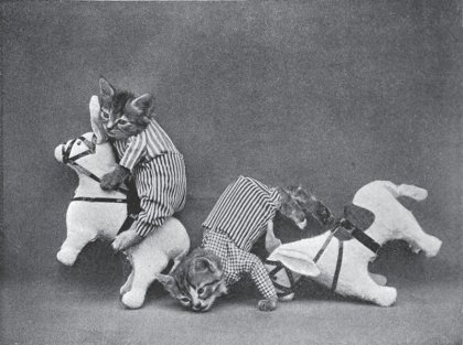 Фотограф Harry Whittier Frees - животные как люди