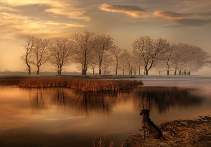 Фотографии от Alexander Matev