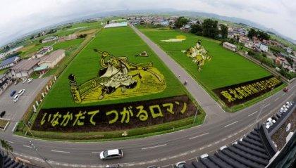 Фестиваль рисовых полей в Японии