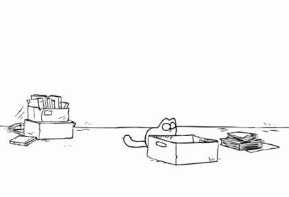 Кот саймона: кот в коробке