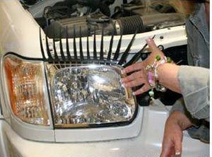 Ресницы для машины