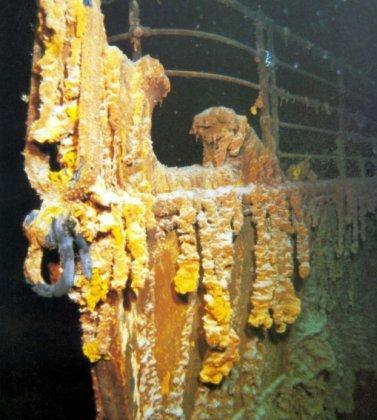 """Компания RMS Titanic Inc, которая много лет обладала эксклюзивным правом на исследование останков  """"Титаника """"..."""