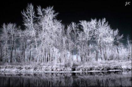 Красивые инфракрасные фотографии